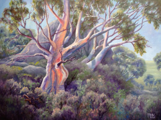 An Oil painting by Moyra Le Blanc Smith in the Realist Impressionist style  depicting Trees Bush with main colour being Green Orange and Purple and titled Pretty Valley Snowgums