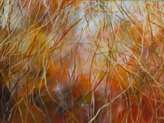 A  painting by Dawn Robinson with main colour being Orange and titled Looking Through