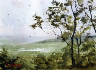 A Watercolour artwork by Joe Cartwright in the Realist Impressionist style  depicting Landscape Trees with main colour being Blue Green and Olive and titled From Tamborine Mountain