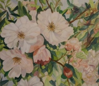 A Watercolour artwork by John Vander Reest in the Realist style  depicting Flowers with main colour being Green and Pink and titled Crab Apple