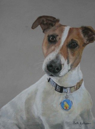 A Pastel artwork by Beth Gibbeson in the Realist style  depicting Animals and Dogs with main colour being Brown Grey and White and titled Almost Fearless (Jack)