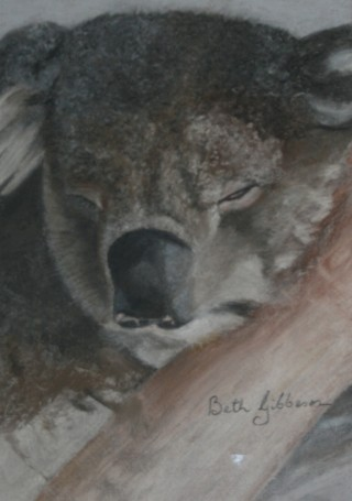 A Pastel painting by Beth Gibbeson in the Realist style  depicting Animals with main colour being Grey and titled Sleepy Koala