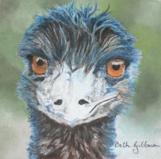 A Pastel painting by Beth Gibbeson in the Realist style  depicting Animals and Birds with main colour being Blue Green and Grey and titled A Blue Rinse (Cheeky Emu)