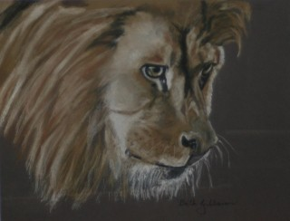 A Pastel painting by Beth Gibbeson in the Realist style  depicting Animals with main colour being Black Cream and Grey and titled Alert