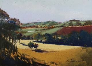 A Pastel artwork by Lyle Dayman in the Realist Impressionist style  depicting Landscape Rural with main colour being Brown Green and Ochre and titled Barossa Gold