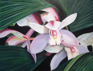 An Acrylic painting by Dawn Luttrell in the Realist style  depicting Flowers with main colour being Green and Pink and titled Orchid Bliss