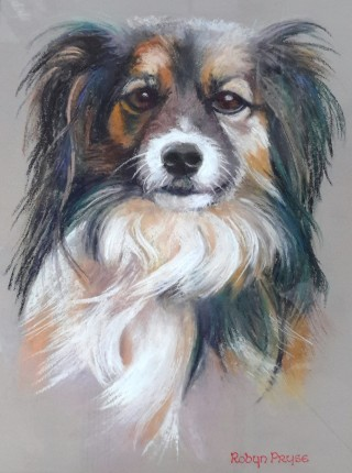 A Pastel painting by Robyn Pryse in the Realist style  depicting Animals Dogs with main colour being Brown Grey and Ochre and titled Holly