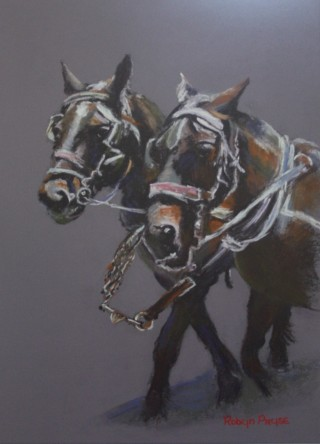 A Pastel painting by Robyn Pryse in the Realist style  depicting Animals Horses with main colour being Black Brown and Grey and titled Horses in Collins Street