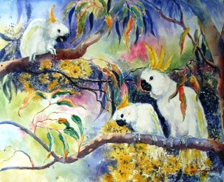 A Watercolour artwork by Yvonne West in the Realist Impressionist style  depicting  Birds with main colour being Blue Green and White and titled Sulphur Crested Cockatoos