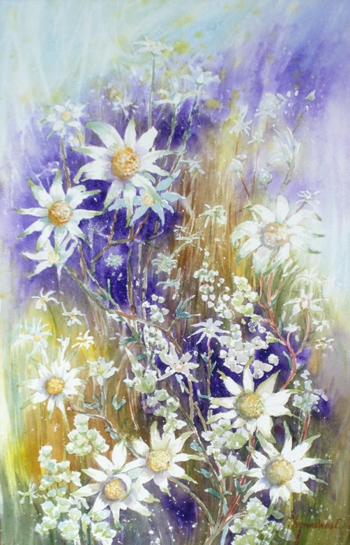 Watercolour Painting by Yvonne West titled Flannel Flowers