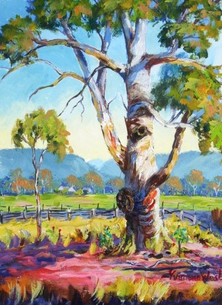 An Acrylic painting by Yvonne West in the Impressionist style  depicting Landscape Hills Mountains and Rural with main colour being Blue Green and Pink and titled Gum Tree W'sor
