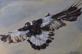 A Mixed Media artwork by Bronwen Hunt in the Realist Impressionist style  depicting Animals Birds with main colour being Black Brown and Grey and titled Swoop