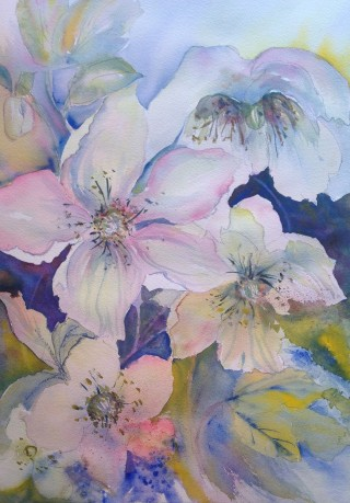 A Watercolour artwork by Barbara McGuire in the Realist Impressionist style  depicting Flowers with main colour being Blue Cream and Pink and titled Pink & Blue Flowers