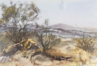A Watercolour artwork by Barbara McGuire in the Realist style  depicting Landscape Rural and Trees with main colour being Blue Ochre and Olive and titled Australian Landscape