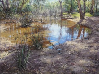 A Pastel artwork by Barbara Beasley-Southgate in the Realist style  depicting Landscape Bush Rural and Trees with main colour being Blue Brown and Grey and titled Murray Backwater, Corowa - SOLD