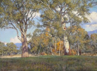 A Pastel artwork by Barbara Beasley-Southgate in the Realist style  depicting Landscape Bush Rural and Trees with main colour being Blue Ochre and Olive and titled Autumnal Landscape, Myrtleford