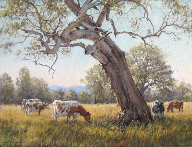 Pastel Painting by Barbara Beasley-Southgate titled Old Weathered Gum, Thornton