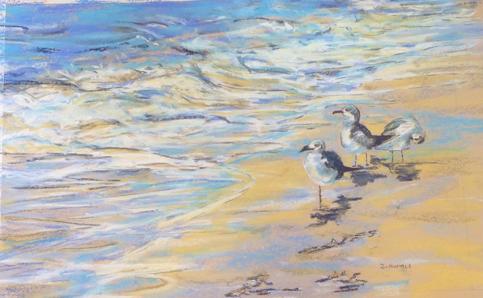 Sea gulls ozart finder - How cold is too cold to paint ...
