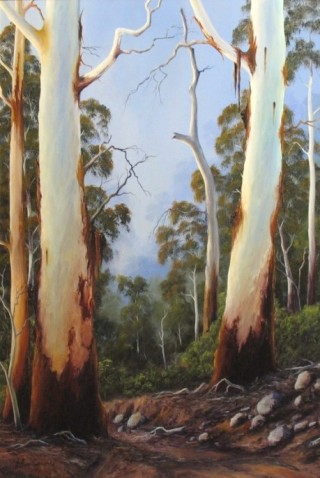 An Oil painting by JOHN COCORIS in the Realist style  depicting Landscape Bush Fantasy and Mountains and titled GUMTREE STUDY