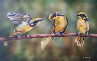 An Acrylic painting by Kathy Medbury in the Realist style  depicting Animals Birds and Garden with main colour being Brown Green and Yellow and titled See told you I would fit