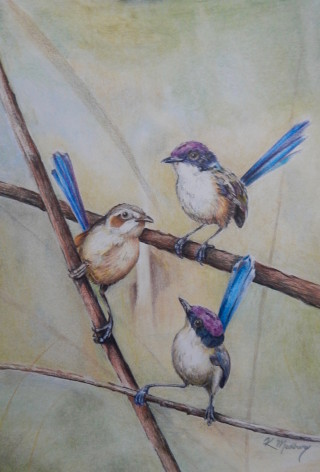 A Pencil painting by Kathy Medbury in the Realist style  depicting Animals and Garden with main colour being Blue Brown and Ochre and titled Little sweeties