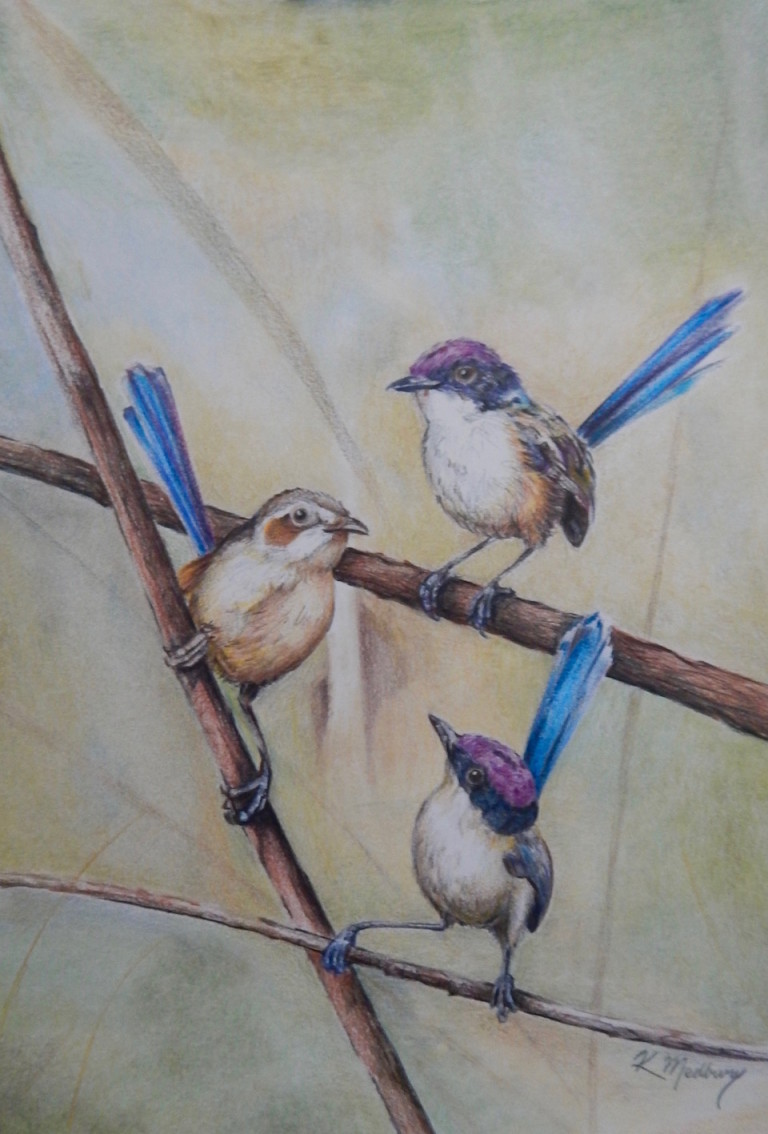 Pencil Painting by Kathy Medbury titled Little sweeties