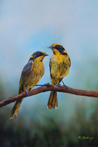 An Acrylic painting by Kathy Medbury in the Realist style  depicting Animals and Birds with main colour being Blue and Yellow and titled I think they are looking