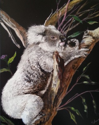 A  painting by Jan Lowe in the Realist style  depicting Animals with main colour being Black Brown and Cream and titled Hissy, the Koala