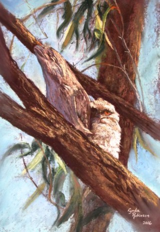 A Pastel artwork by Lynda Robinson in the Realist style  depicting Animals Birds and titled 'Tawnies'