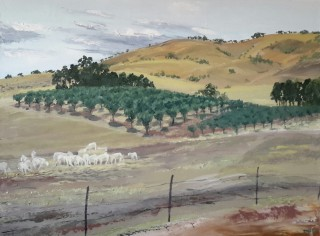 An Oil painting by Dawn Lim in the Realist style  depicting Landscape Animals Farmland and Hills with main colour being Brown Green and Grey and titled Moonambel Gap Olives