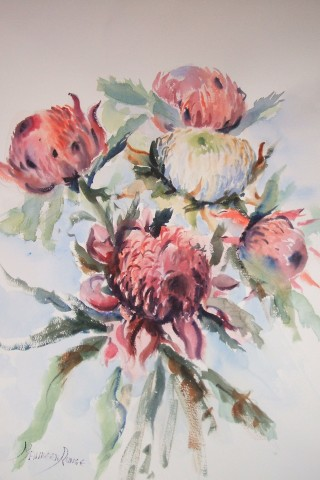 A Watercolour artwork by Maureen Runge in the Impressionist style  depicting Flowers with main colour being Grey and Pink and titled WARRATAH