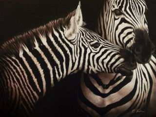 A Scratchboard painting by Rikki Fisher in the Realist style  depicting Animals and Horses with main colour being Black Grey and White and titled A Nuzzling Moment