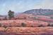 01 Flinders Ranges View B red size