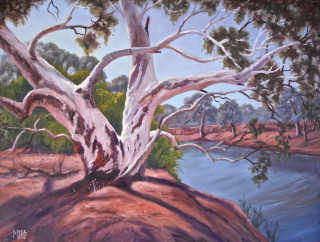 An Oil  painting  by Australian artist Moyra Le Blanc Smith in the Realist Impressionist style  depicting Landscape, Bush, Trees and Water with main colour being Blue, Cream and Orange and titled Cattle Pool