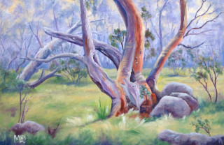 An Oil painting by Moyra Le Blanc Smith in the Realist Impressionist style  depicting Rural Bush and Trees with main colour being Blue Green and Purple and titled Snow Gums