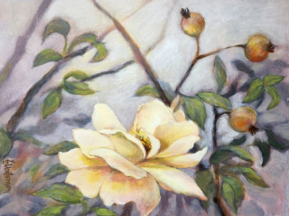 An Acrylic painting by EKATERINA MORTENSEN in the Realist style  depicting Flowers with main colour being Green Grey and Olive and titled Rose of Goulburn 1