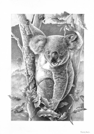 A Pencil drawing by Rikki Fisher in the Realist style  depicting Animals with main colour being Black Grey and White and titled Morning Munch