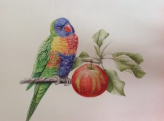"""A Watercolour artwork by Nola Sindel in the Realist style  depicting Animals Birds with main colour being Blue Cream and Green and titled """"Will I, Won't I?"""""""