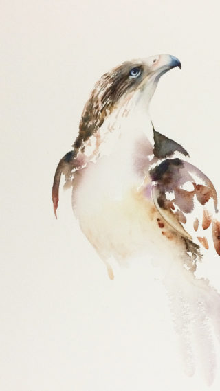A Watercolour artwork by Nadine Dudek in the Realist Impressionist style  depicting Animals Birds with main colour being Brown Ochre and Purple and titled Ferruginous Hawk