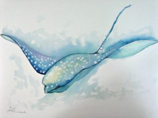 A Watercolour artwork by Tracey L Dawes in the Impressionist style  depicting Animals Beach and Sea with main colour being Blue and White and titled Manta Ray