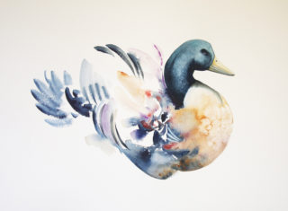 A Watercolour painting by Nadine Dudek in the Realist Impressionist style  depicting Animals Birds with main colour being Blue Green and Ochre and titled Plumage