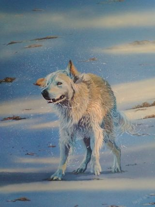 A  painting by Hazel Howie in the Realist style  depicting Animals Dogs with main colour being Blue and Cream and titled Simple Pleasures