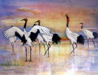 A Watercolour artwork by Glenys Gaston in the Contemporary style  depicting  Birds Bush and Water with main colour being Black Orange and Pink and titled Japanese Dancing Cranes