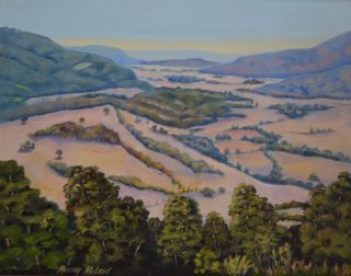 An Oil painting by Murray McLeod in the Realist style  depicting Landscape Bush Farmland and Mountains with main colour being Blue Green and Olive and titled Killarney S.E Qld