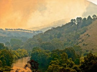 A  photograph by Philip Bell depicting Landscape Mountains with main colour being Cream Ochre and Olive and titled Murray Fire 1
