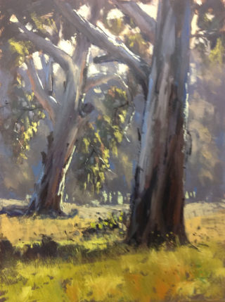An Oil painting by John Rice in the Realist Impressionist style  depicting Landscape Rural and Trees with main colour being Blue Green and Grey and titled Putta Bucca Gums