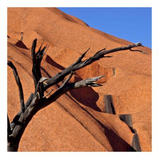 A  photograph by Philip Bell with main colour being Blue and Orange and titled Uluru Noon
