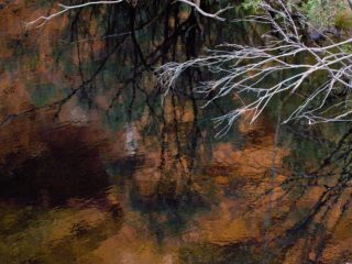 A  photograph by Philip Bell depicting Water with main colour being Brown and titled Remote Water I