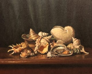 An Oil painting by Gregory R. Smith in the Realist style  depicting Still Life Beach Interior and Sea and titled Shells - Some so Rare