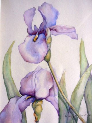 A Watercolour artwork by Glenys Gaston in the Contemporary Realist style  depicting Flowers Bush and Lake with main colour being Blue and White and titled Irresistible Iris